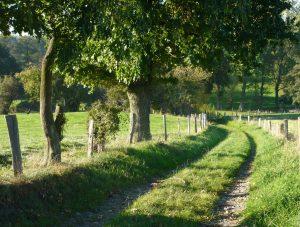 Spaziergang @ Kontaktstelle Aachen 1, Südstr. 6